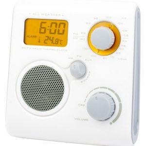 iZound Shower Radio